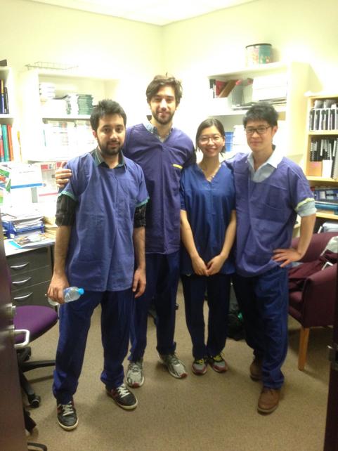 students-at-hospital